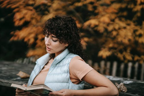 Focused young woman with curly hair recreating in autumn park sitting on bench and reading interesting book with attention