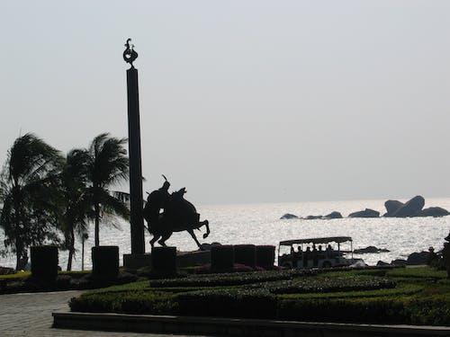 Free stock photo of Hainan Island, rain forest, Sanya