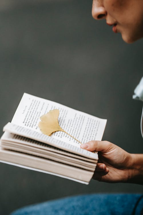 Crop anonymous person reading book with yellow autumn leaf placed on page as bookmark against blurred background