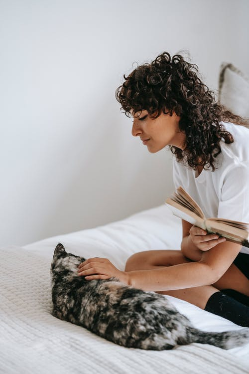 From above of content young female in casual outfit sitting on bed and stroking fluffy cat while reading book
