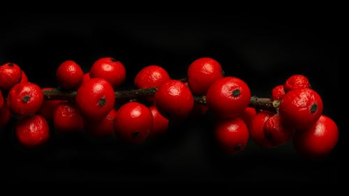 Red Round Fruits on Black Surface
