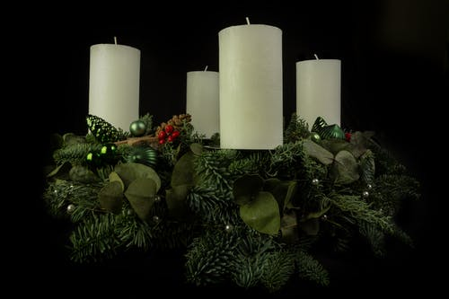 White Pillar Candle on Green Pine Tree