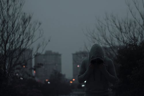 Person in Black Hoodie Standing Near Bare Trees