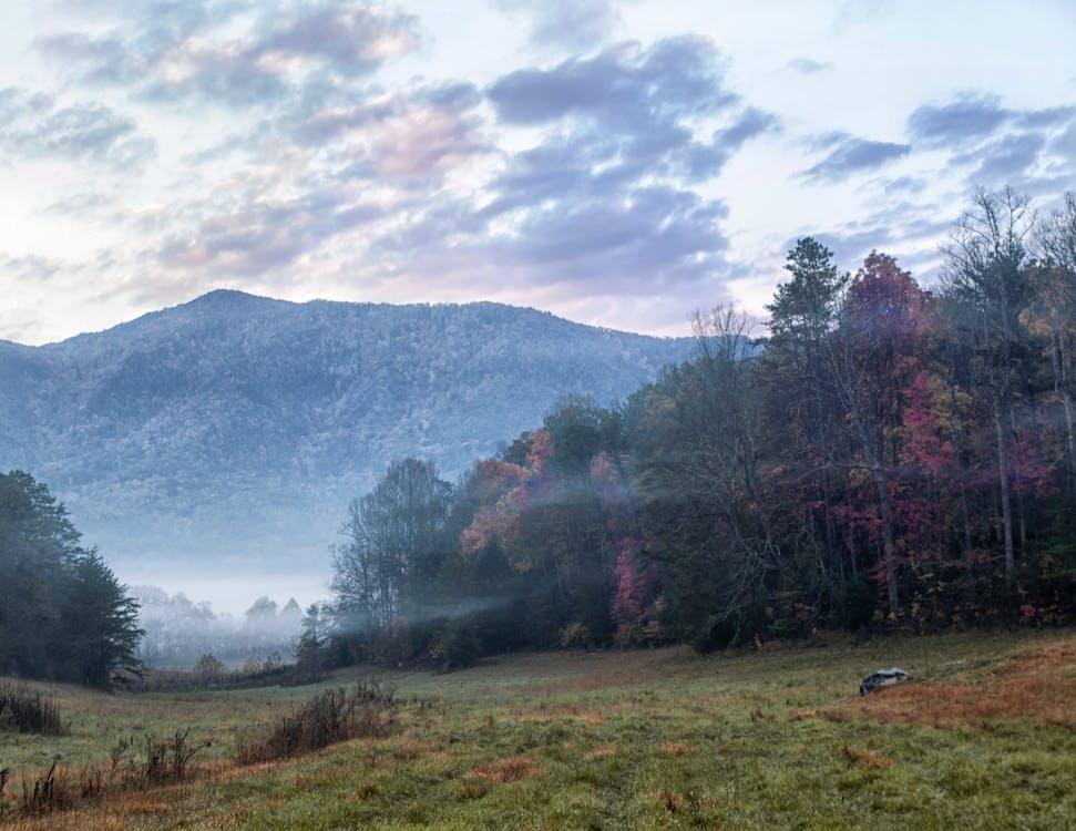 Free stock photo of Great Smokey Mountains, sky, Smokey Mountains