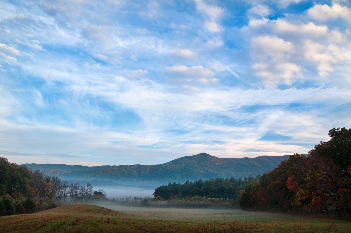 Free stock photo of fog, great smokey mountains, mountains
