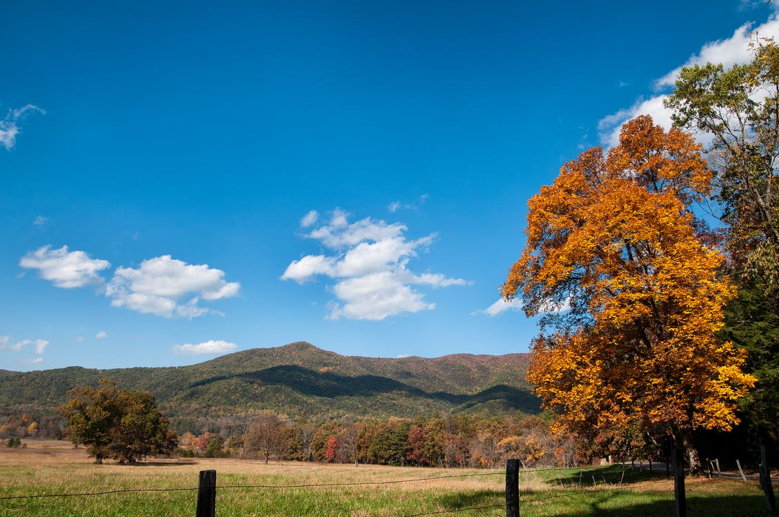 Free stock photo of Great Smokey Mountains, Smokey Mountains, waterfall