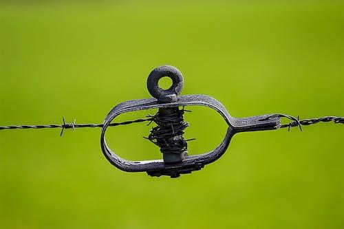 Darmowe zdjęcie z galerii z bezpieczeństwo, ciernie, drut, drut kolczasty