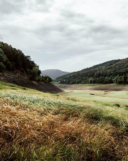 Green Grass Field Near Lake Under Cloudy Sky
