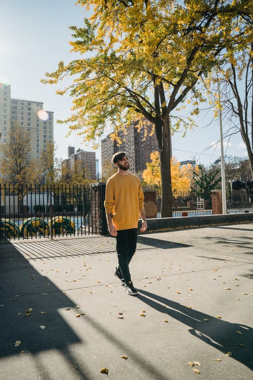 Full body of young male in trendy outfit strolling in empty park in autumn sunny weather