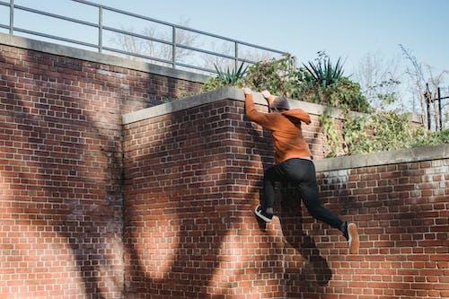 Foto stok gratis adrenalin, aktif, aktivitas