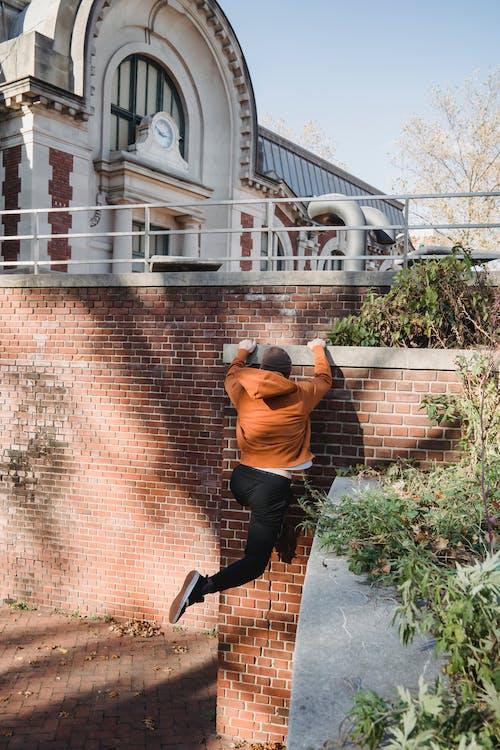 Gratis lagerfoto af adræt, adrenalin, aktiv, aktivitet