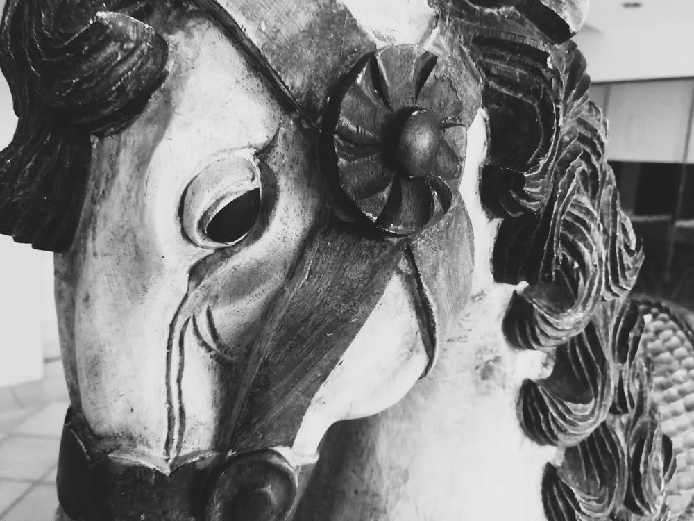 antiguo, blanco y negro, caballo