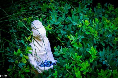 Ingyenes stockfotó kert, szobor, természet témában