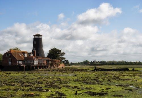 Immagine gratuita di abbandonato, acqua, agricoltura