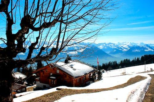 Ảnh lưu trữ miễn phí về cabin gỗ, mùa đông, núi xanh, tuyết