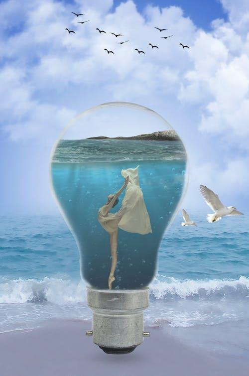 Kostnadsfri bild av ballerina, fiskmåsar, glödlampa, hav