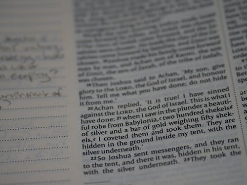 Free stock photo of bible, bible study, blur, blurred background