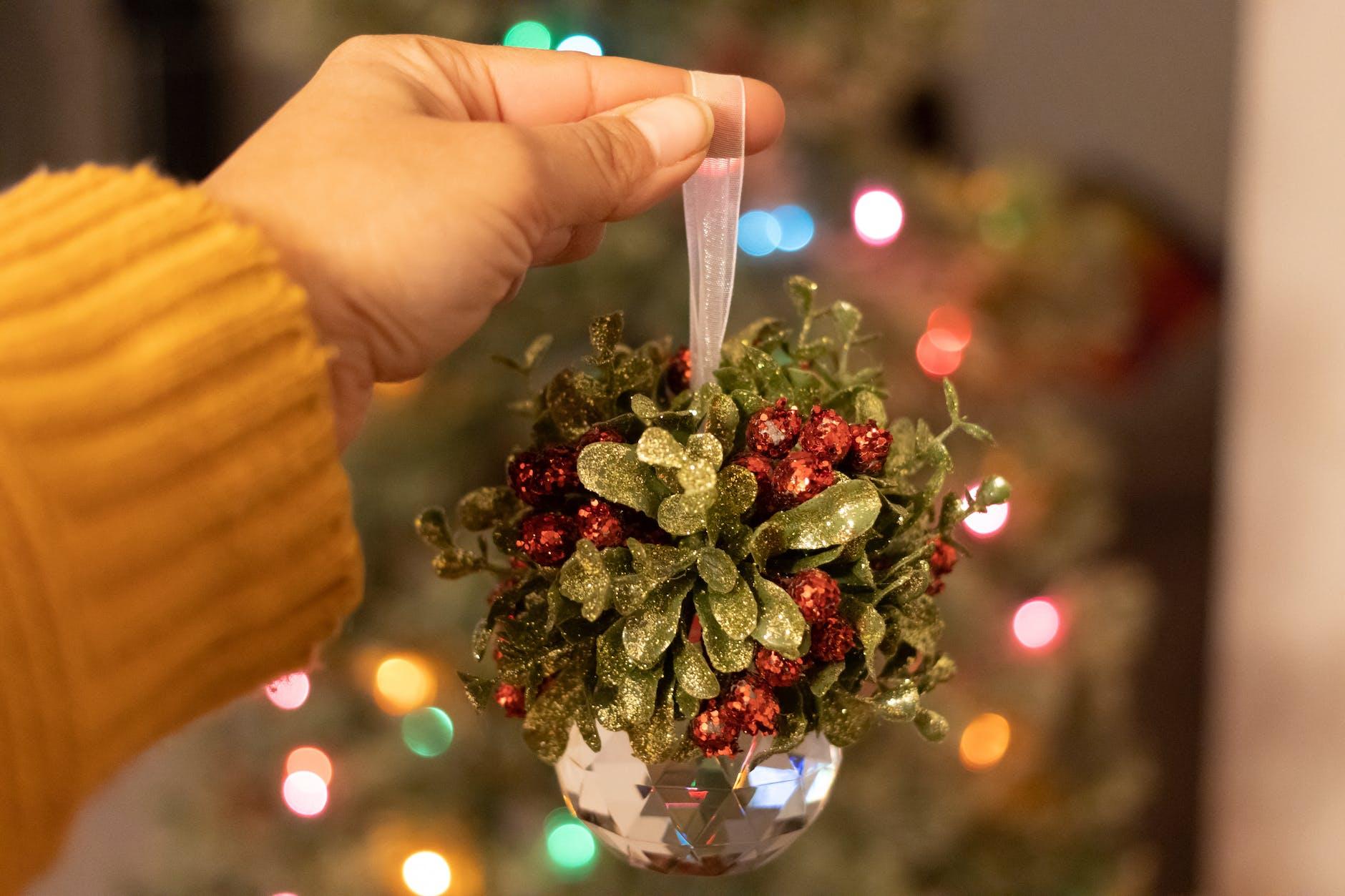 mistletoe, Christmas world travel quiz 2020