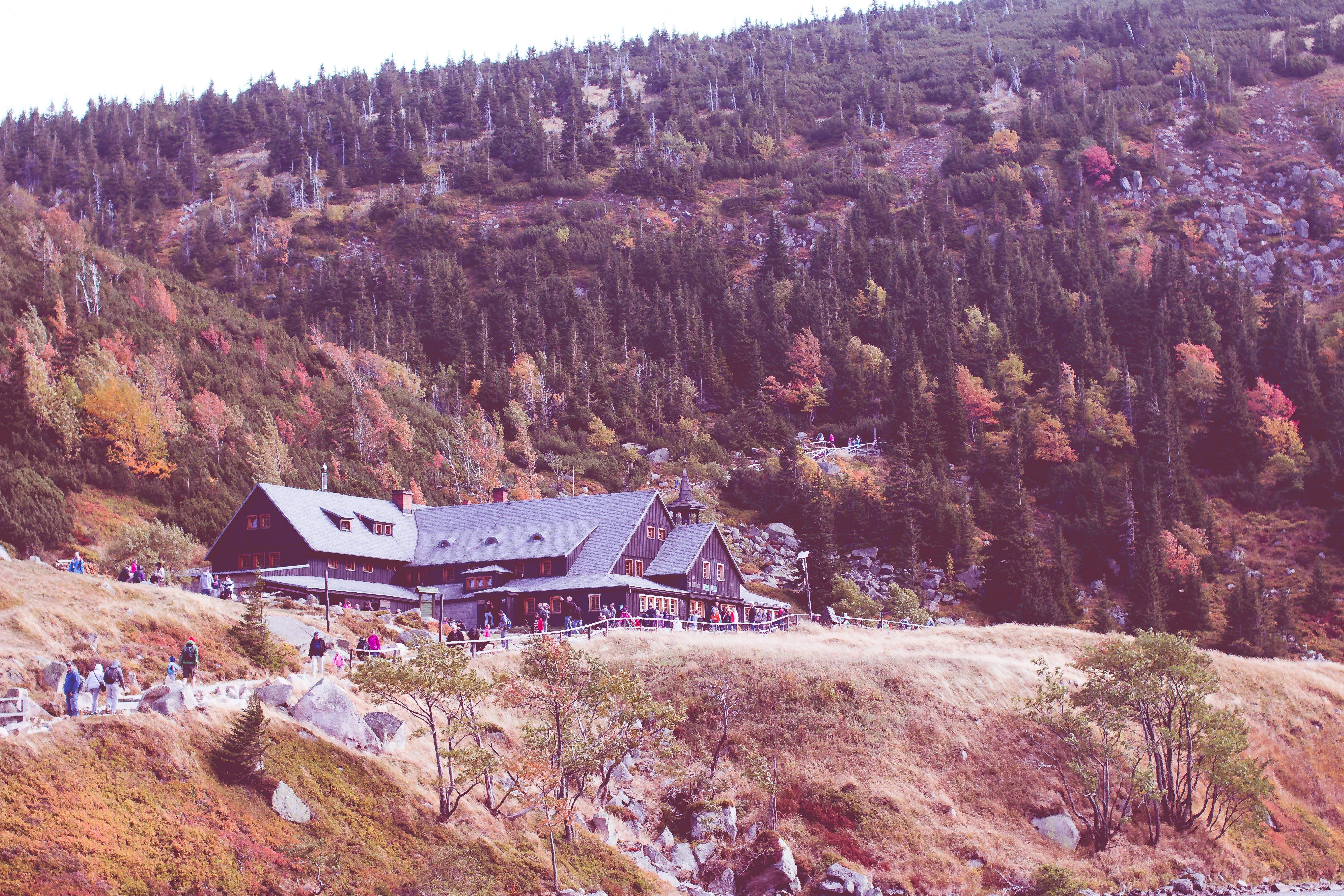 Free stock photo of karkonosze, mountains, poland, samotnia