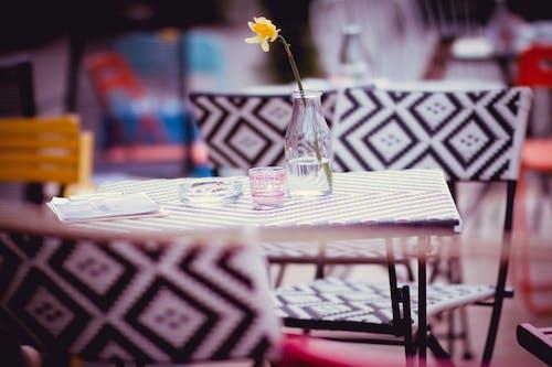 คลังภาพถ่ายฟรี ของ กระจก, ดอกไม้, ร้านอาหาร, เก้าอี้