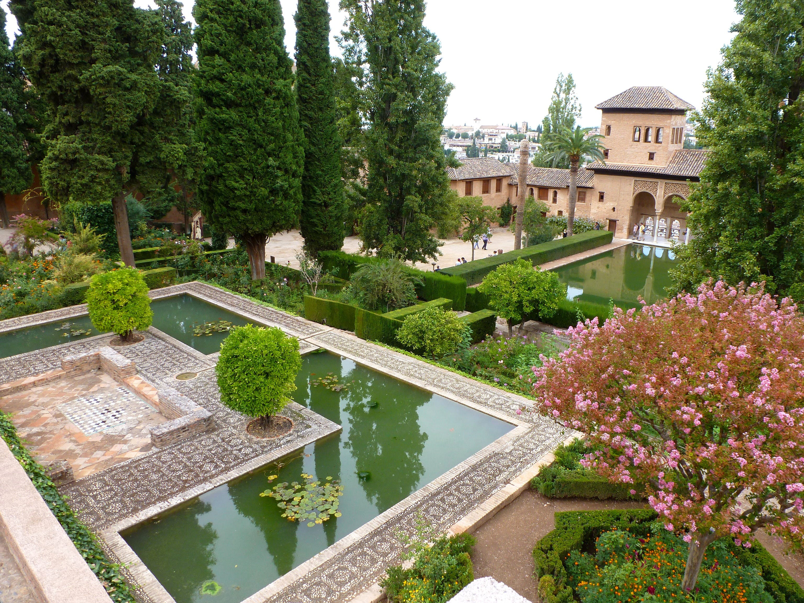 Základová fotografie zdarma na téma alhambra, andalusie, architektura, evropa