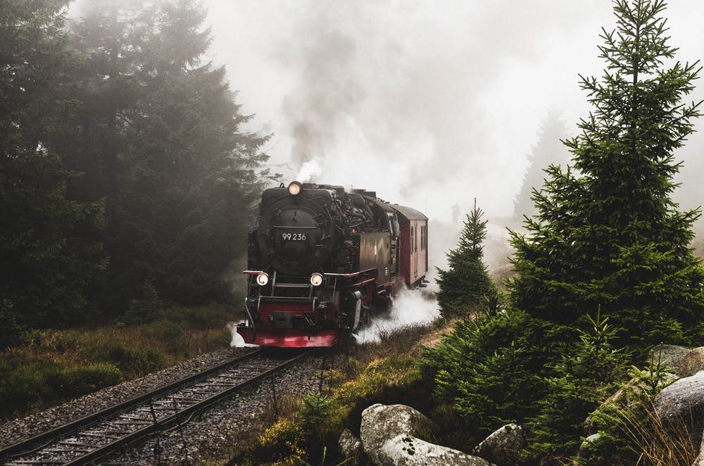 Red and black train on rail tracks near green trees.   Photo: Pexels