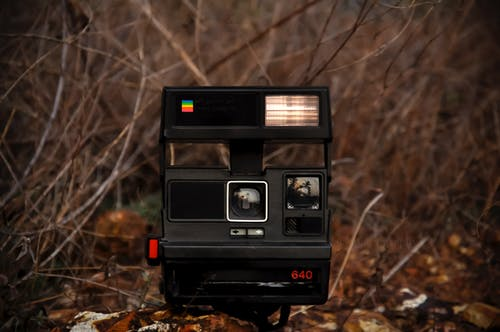 Retro instant photo camera placed on stone on ground near leafless plants and bushes in daylight in countryside