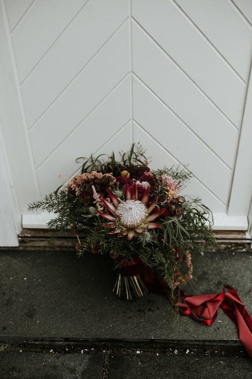 Ảnh lưu trữ miễn phí về bó hoa cưới, căn nhà, cây, gia đình