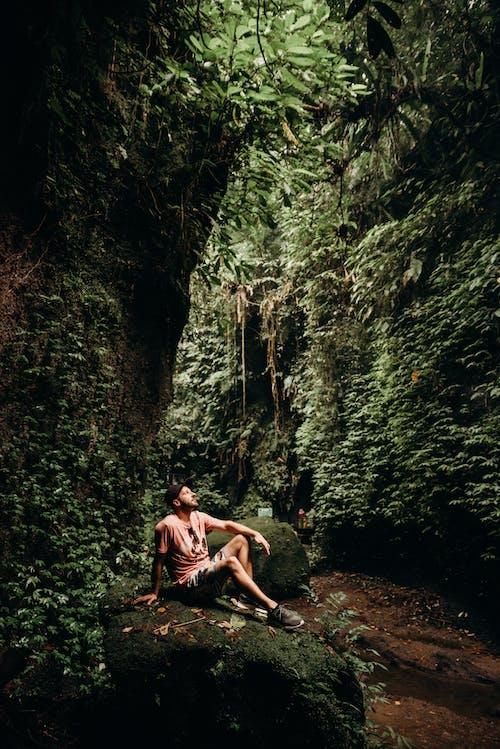 紅色短褲的人坐在森林中間的岩石上