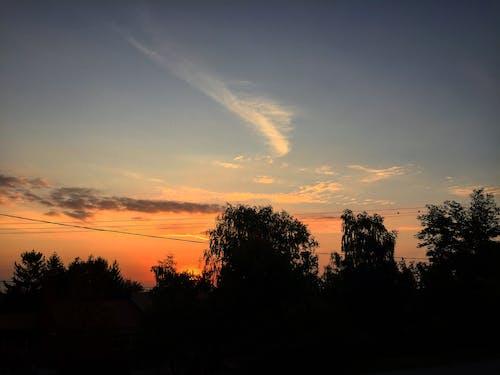 Základová fotografie zdarma na téma barva, obloha, příroda, ranní slunce