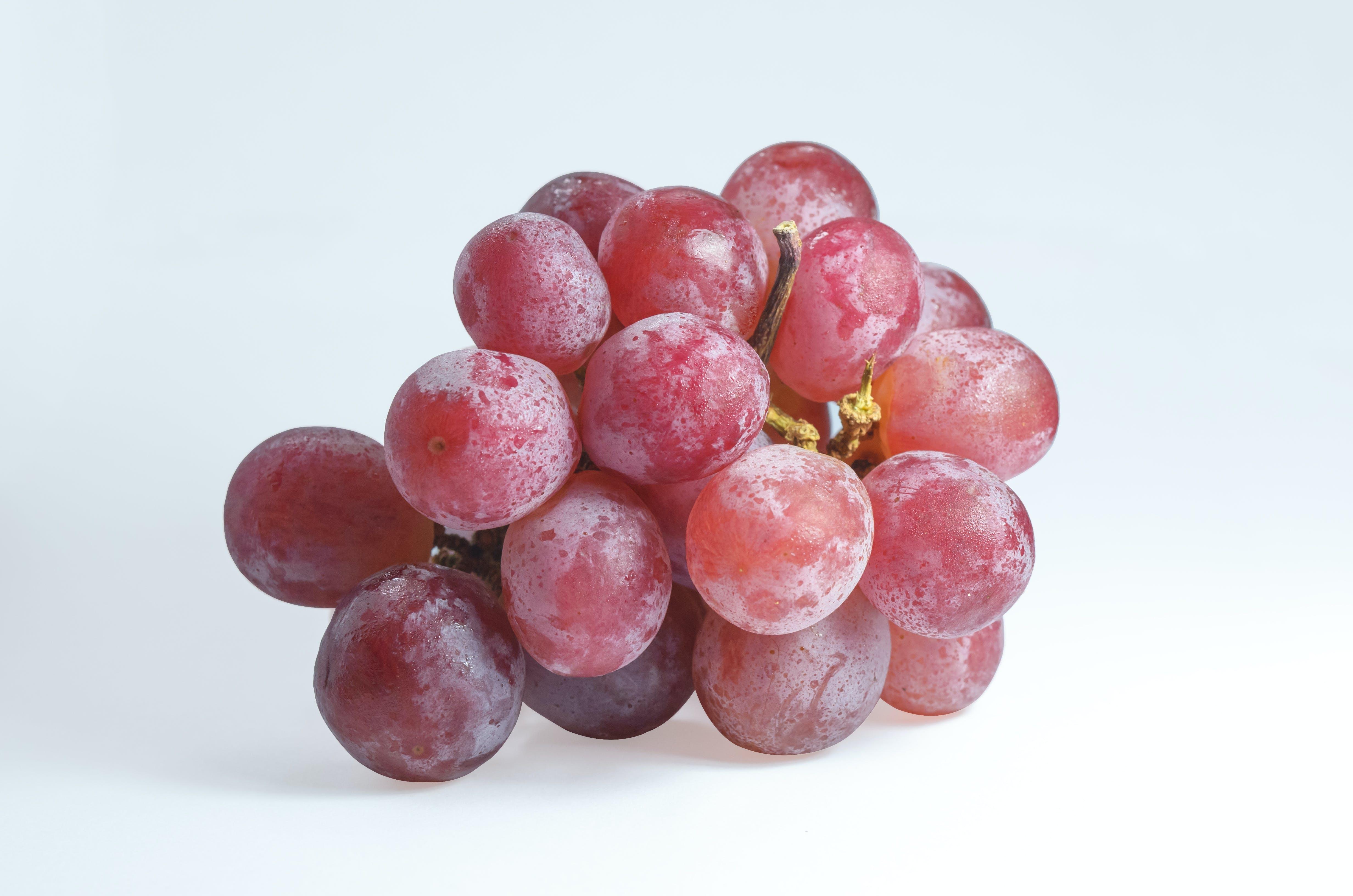 Free stock photo of food, healthy, fruit, tasty