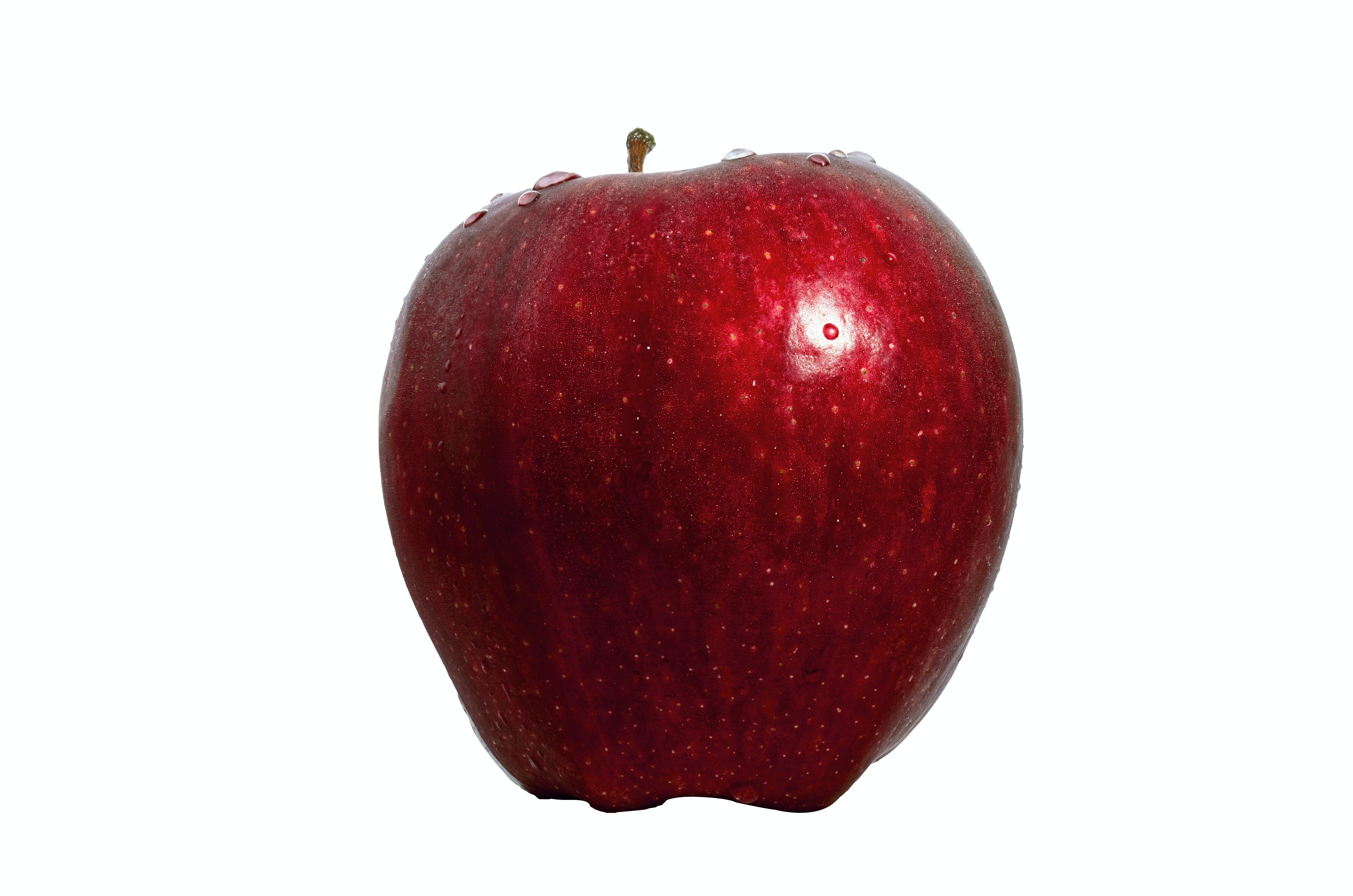 Free stock photo of alimento, apple, bruno scramgnon fotografia, comida