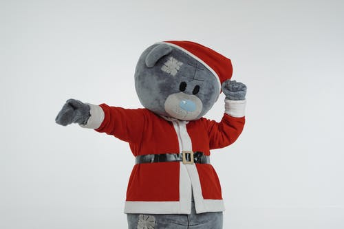 Person in Santa Claus Costume