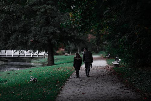 Couple Walking on Pathway With Their Dog On The Grass