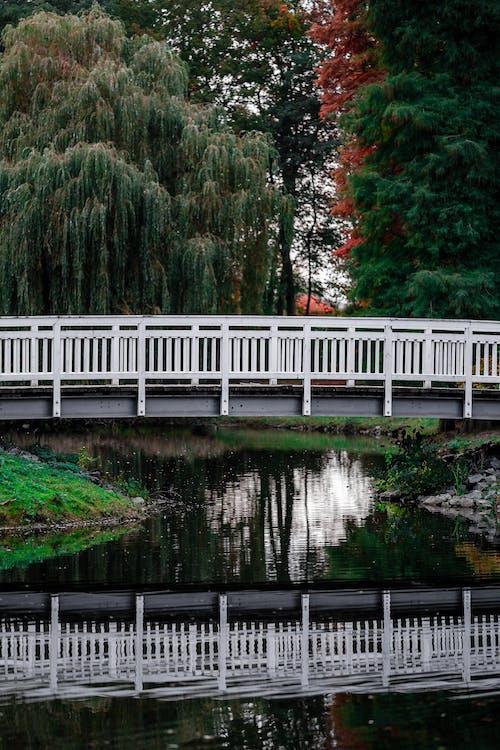 White Wooden Bridge over River