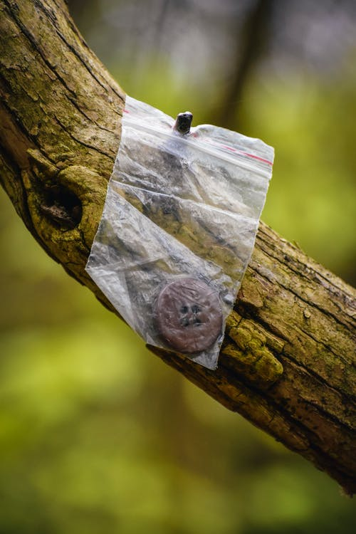 Plastic zip bag with button hanging on tree
