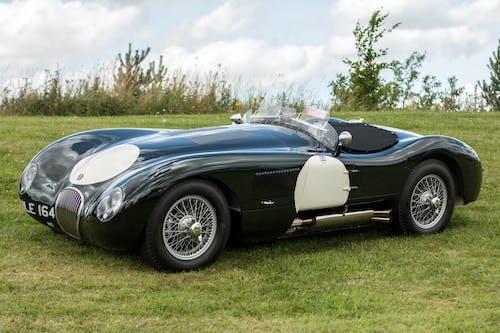 Free stock photo of car, jaguar, race car