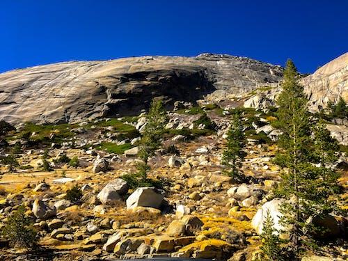 Kostenloses Stock Foto zu ausflug, bäume, berg, blauer himmel