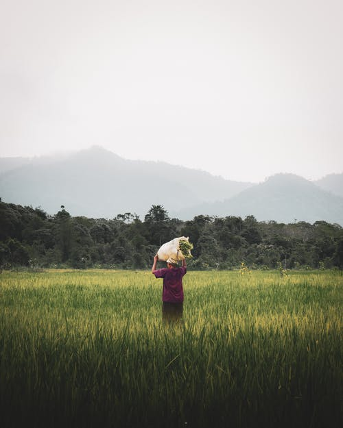Woman carrying bag with cane in field