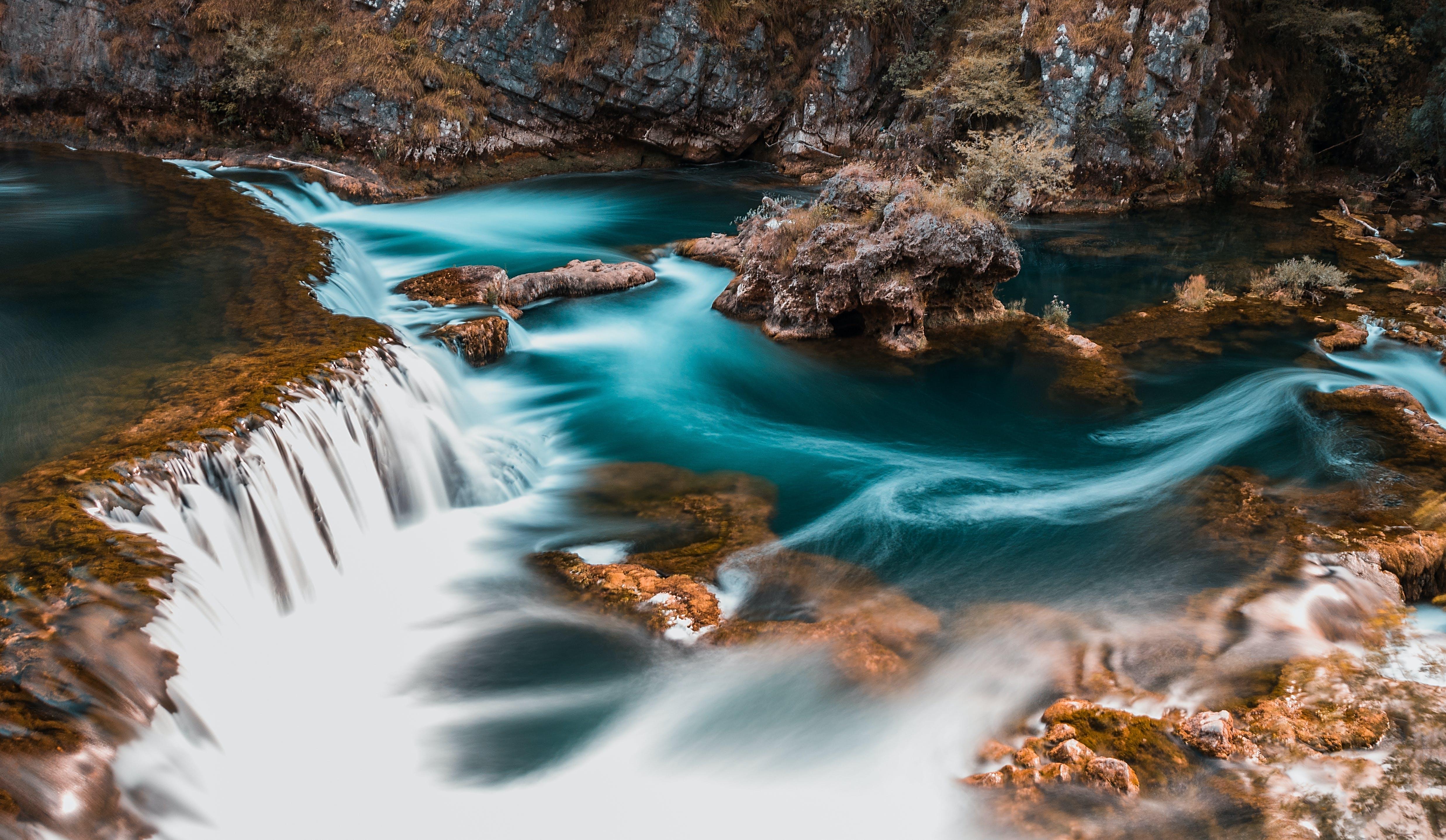 creek, environment, flow