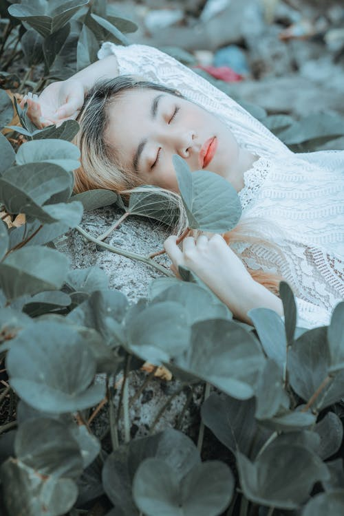 Sensual young Asian female in white blouse lying amidst green plants with eyes closed