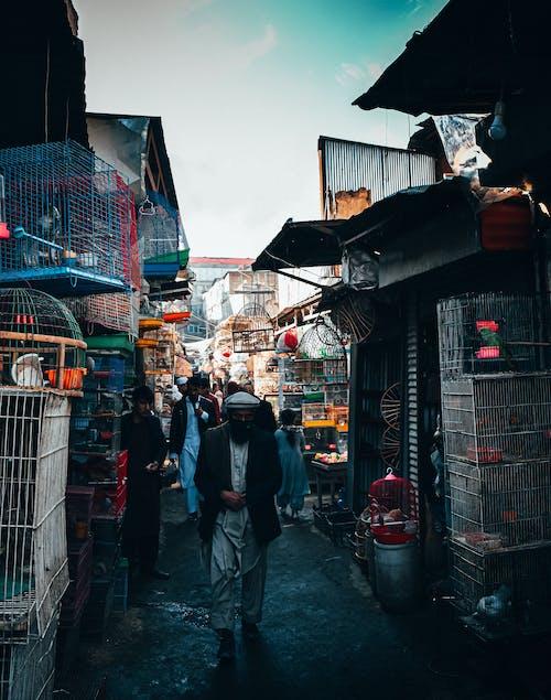 Photos gratuites de bazar, bourse, citadin