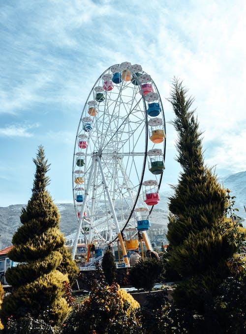 Photos gratuites de amusement, arbre, carnaval