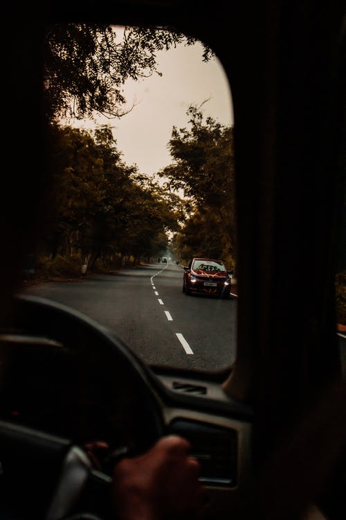 Crop unrecognizable person driving car on asphalt road surrounded by lush autumn trees against sunset sky