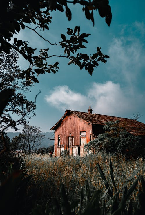 Brown Wooden House Near Green Trees Under White Clouds and Blue Sky