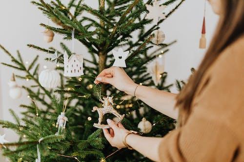 假日背景, 冬季, 十二月 的 免费素材图片