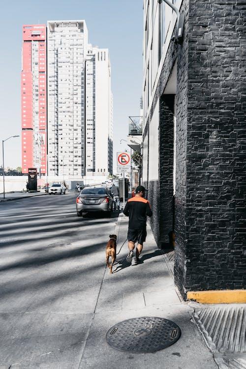 Ilmainen kuvapankkikuva tunnisteilla aktiivisuus, anonyymi, arkkitehtuuri, asfaltti