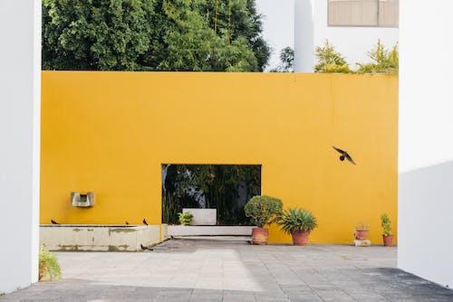 Ilmainen kuvapankkikuva tunnisteilla arkkitehtuuri, asua, asuin, ei kukaan