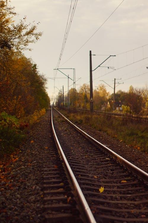 Kostenloses Stock Foto zu ausflug), beratung, draht, eisenbahn