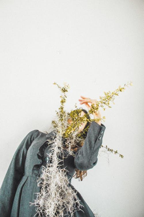 Безкоштовне стокове фото на тему «атмосферний, біла стіна, Великдень, дерево»